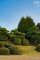 Zen Garden (iisrob) Tags: nijo nijō japan kyoto castle zen