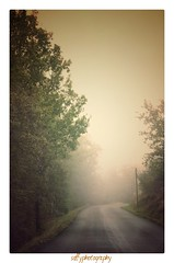 Route brumeuse - Misty raod (soffy.photography) Tags: route road brouillard mist fog misty france campagnefrançaise french frenchlandscape mood ambiance ambiancebrumeuse mistymood