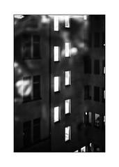 Berlin backyard (Armin Fuchs) Tags: arminfuchs lavillelaplusdangereuse backyard windows night jazzinbaggies aikido naturallayer light niftyfifty