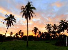 Quarta-sunset (sonia furtado) Tags: quartasunset sunset pds contraluz nísiafloresta rn ne brasil brazil soniafurtado frenteafrente