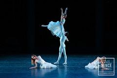 190806_DancesFor2019_ChristopherDuggan_063