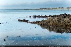 La Torche (Ludtz) Tags: ludtz leica leitz leicamtyp240 m240 teleelmarit90|28 leitzcanada rangefinder télémétrique télémètre bretagne breizh brittany pennarbed 29 finistère mer ocean océanatlantique atlantic atlantique atlanticocean plage beach rock rocher rocks rochers pointedelatorche latorche marée tide