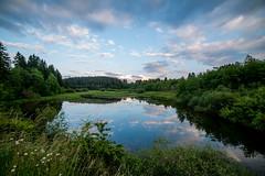 Le lac de Butgenbach (musette thierry) Tags: jaune lac été belgique belgium musette thierry nikon d800 eau water bleu ciel juin