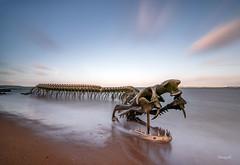 Le serpent d'Océan (Soregral) Tags: sand sunrise longesxposure sable mer sculpture plage ocean serpent cloud nuage ciel sky paysage beach sea leverdesoleil
