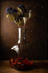 A bottle with flowers (Luiz L.) Tags: vermelho