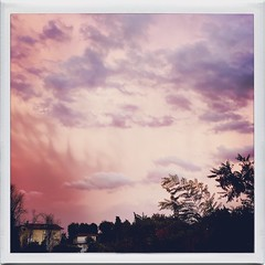 spettacolo serale (ghiro1234 [♀]) Tags: sera sifasera tramonto hipstamatic dallamiafinestra albizia meraviglia nuvole nuvolerosa robertaghidossi