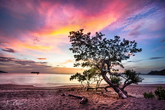 Sunset Area (Wits End Photography) Tags: outline sand color sunset seashore nature water beach evening silhouette clouds nautical dusk backlit coastline ocean tree shore backlight twilight coastal sky form costarica colorful shape seaside cloudy colors multicolored sea