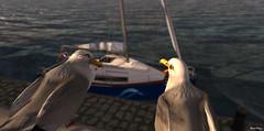I like these mobile toilets... (Mara Telling:) Tags: sl secondlife seagull boat sailboat