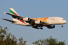 A6-EOV   Airbus A380-861   Emirates (Expo 2020 - Opportunity colours) (cv880m) Tags: newyork jfk kjfk kennedy johnfkennedy aviation airliner airline aircraft airplane jetliner airport spotting planespotting airbus a6eov a380 388 380800 380861 emirates dubai uae unitedarabemirates expo2020 oppurtunity orange superjumbo