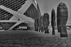 Parade of Large Heads (gerard eder) Tags: world travel reise viajes europa europe españa spain spanien städte stadtlandschaft street streetlife streetart valencia art arte urban urbanlife urbanview architecture arquitectura architektur blackandwhite blackwhite blancoynegro whiteandblack whiteblack monochrome sculpture escultura skulptur outdoor