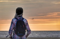 Jill.. (Mike-Lee) Tags: jill july2019 stannes beach sunset lancashire westcoast seagull blackpool fleetwood