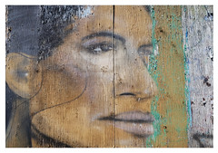 ingrained in the wood (mcfcrandall) Tags: wood grain woodgrain face streetart printing old faded eyes nose mouth profile graffiti outdoors fence peeling paint weathered kensington
