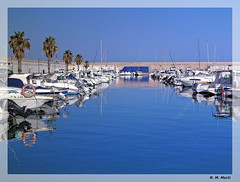 Torredembarra Nautic Club (R. M. Marti) Tags: nautica botes lanchas agua muelle palmas motor plantas nautical boats water dock palms engine plants torredembarra