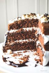 S'mores Cake (dtzapztl76) Tags: recipe dessert recipes yummy taste food