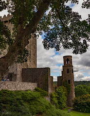 Blarney Castle (ivanstevensphotography) Tags: castle blarneycastle trees tree bark irelanddiscover sky light shadow leaves gardens grass people