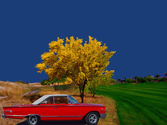 Synergy (oybay©) Tags: vistancia trilogyatvistancia golfcourse golf golfing color colors colorful synergy unity brilliant overexposed shiny reflective mercury marauder redcar red car automobile