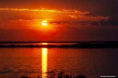 Sun of every day (Ivan R.B.M.) Tags: sunofeveryday sol solpoente lagoguaíba portoalegre parquemarinhadobrasil riograndedosul brasil cores nuvens
