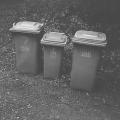 Recycling bin, rubbish bin, greens bin (Matthew Paul Argall) Tags: fixedfocus 120film 120 mediumformat squareformat squarephoto 6x6 ilforddelta100 100isofilm blackandwhite blackandwhitefilm bins