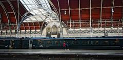 Paddington Station (Steve only) Tags: pen lumix g olympus panasonic asph 7144 vario ep5 14714 714mm england london station snap paddington f4 m43 peopleinthecity railway landscape
