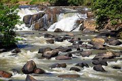 O rio e seu curso (Ruby Augusto) Tags: socorrosp rio river pedras trees árvores stones branches