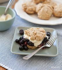 easy whole grain blueberry shortcakes (dtzapztl76) Tags: recipe recipes yummy dessert cake shortcake