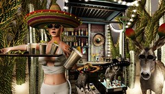 Tourista (tralala.loordes) Tags: drd deathrowdesigns drdblogger drdblogging tralalaloordes tralala tra secondlife sl slfashionblogging slblogging flickrblogging flickrart fashion fantasy virtualphotography virtualreality vr avatar tequila mexico cactus desert donket drunkencats sombrero