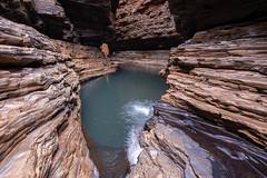 Karajini_Kermits Pool_DSF0424