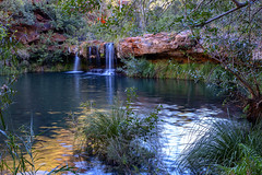 Karajini_Dales Gorge_Ferns Pool_DSF0187
