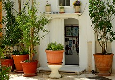 OMG (Breboen) Tags: devotion italy bari religion door plants street house pots outside cross pussy holy virgin open entry traditional puglia prayer pio