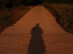 Flickr Friday,  #brown (photohml) Tags: brown photograf braun selfie sonnenaufgang sunrise 2019 olympus sigma60mm sigma 60mm omd em5 mft weg path micro43 m43 microfourthirds oly dslm evil spiegellos mirrorless schattenselfie shadowselfie schatten shadow lightandshadow lichtundschatten