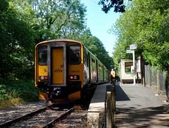 150248 Coombe Junction Halt (4) (Marky7890) Tags: gwr 150248 class150 sprinter 2l86 coombejunctionhalt railway cornwall looevalleyline train