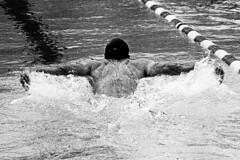 Training (tiltdesign2016) Tags: olympusom2n tokina135mm analogphotography bw rolleirhsdc19 kodaktrix400 plustekopticfilm7600ise sport schwimmbad schwimmen wuppertal wasserfreundewuppertal1883ev olympiavorbereitung delphin