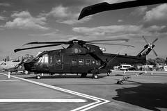 Veni, vidi, vici (crusader752) Tags: hh101a caesar mm818651502 aeronauticamilitare italianairforce riat 2019 eh101 merlin 15ºstormo bw blackwhite mono monochrome leonardo