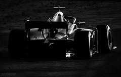 F1 Black Edition (Rawcar.com Photography) Tags: f1 formula one formula1 formulaone rawcar bw blackandwhite sochi grandprix gp sauber petronas amg