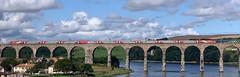 LNER 91120/822XX (08/08/2019) (CYule Buses) Tags: class91 intercity225 91120 class82 eastcoastmainline lner londonnortheasternrailway royalborderbridge