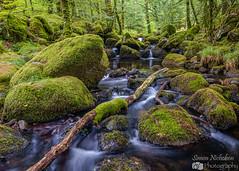River Meavy, Dartmoor (Simon Nicholson Photography) Tags: waterfall river dartmoor fuji devon log xt3 longexposure rocks