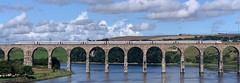 LNER AZUMA 800107 (08/08/2019) (CYule Buses) Tags: hitachi lner londonnortheasternrailway 800107 class800 eastcoastmainline royalborderbridge