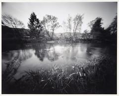 Flusslandschaft (Heinz-Dieter Schardt) Tags: lochkamera pinhole analog silverprint largeformat 4x5