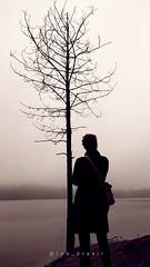 Em dias nublados, vemos de outras formas. Em dias nublados, as formas mudam. Em dias nublados, a luz atrapalha. Em dias nublados, as sombras prevalecem.  Até que o vento sopre... (Roe Brasil) Tags: sombras xiaomi redminote7 note7 amor neblina natureza riachogrande roebrasil sbc