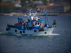 Pescadores (Luicabe) Tags: agua airelibre barco cabello calle ciudad enazamorado exterior gaviota luicabe luis naturaleza ngc orilla paisaje pescador yarat1 zamora zoom olympus