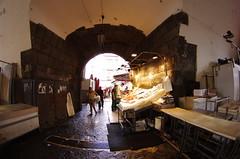 271 Sicile Juillet 2019 - Catane, La Pescheria (paspog) Tags: catane catania marché market markt sicile sicily sicilia juli juillet july 2019 poissons fish marchéaupoissons fischmarket fishmarkt lapescheria pescheria