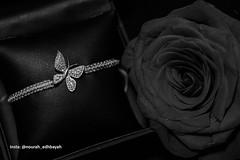 Birthday Night (Nourah.A.Edhbayah (Super Flower♥إظبيه)) Tags: nourah abdullah edhbayah q8 kuwait نوره عبدالله اظبيه الكويت