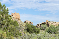Hovenweep From the Floor of the Canyon (aaronrhawkins) Tags: hovenweep nationalmonument ruins anasazi nativeamericans utah cliff dwelling canyon summer hike hiking ancient civilization architecture rim aaronhawkins