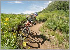 Berms & Wildflowers - Park City's WoW Trail (Photo-John) Tags: wildflowers flowers utah trail berm mtb bike cycling outdoors adventure mountains wowtrail mountainbike mountainbiking mountainbiker meadow actionsports actionphotography sports mtbgirl aspens wasatchmountains parkcity midway shadow editorialphotography stockphotography stockphoto outdoorphotography travel sonyalpha sonya6500