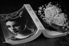 Your Eyes (Nourah.A.Edhbayah (Super Flower♥إظبيه)) Tags: nourah abdullah edhbayah q8 kuwait نوره عبدالله اظبيه الكويت