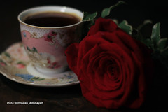 Coffee Lover (Nourah.A.Edhbayah (Super Flower♥إظبيه)) Tags: nourah abdullah q8 kuwait edhbayah نوره عبدالله اظبيه الكويت