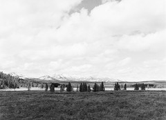 Yellowstone Landscape, Hayden Valley (LarsHolte) Tags: pentax 645 pentax645 645n 6x45 smcpentaxfa 75mm f28 120 film 120film analog analogue kosmo foto mono 100iso caffenolc mediumformat blackandwhite classicblackwhite bw monochrome filmforever filmphotography ishootfilm larsholte homeprocessing usa yellowstone nationalpark wyoming landscape