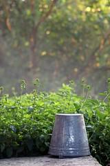 Magic Bucket (JaaniicB) Tags: canon 77d eos 100mm f28 nature summer bucket feeling mood light lighting metal steel green trees bokeh background