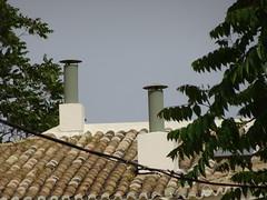 Atenes (visol) Tags: xemeneies xememeie xemeneie xemeneia tximinia chimneys cheminées chimeneas camino chamine chimney barbacana arquitectura roofs rooftops tejados teulades tejas tejado teulas teulat tickedtabby grecia