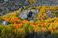 Fall Colors Bishop Creek (RS2Photography) Tags: trees house color colour tree fall home nature colors beautiful beauty leaves creek canon landscape outside photography october colorful colours natur bishop 80d aspendell bishopcreek southlakesabrina southlake canon80d fallcolors fallcolours naturephotography bishopcalifornia california cali flickr smugmug water waterfall green orange usa america art yellow mountain bishopca inyo inyocounty